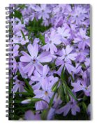 Harmony To Make Small Things Grow Spiral Notebook