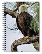 Harriet Front Pine  Spiral Notebook