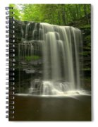 Harrison Wrights Forest Falls Spiral Notebook