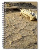 Harsh Reality Spiral Notebook