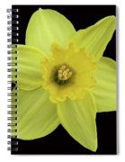 Hart Spiral Notebook