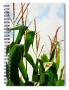 Harvest Corn Stalks Spiral Notebook
