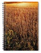Harvest Twilight Spiral Notebook