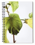 Hau Plant Art Spiral Notebook
