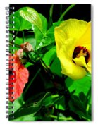 Hau Tree Blossoms Spiral Notebook