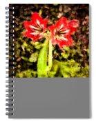 Havana Amaryllis Spiral Notebook