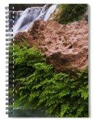 Havasu Creek Grand Canyon 3 Spiral Notebook