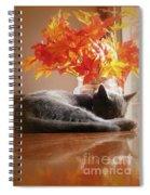 Have A Restful Thanksgiving Spiral Notebook