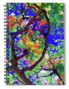 Hawaii Shower Tree Flowers In Abstract Spiral Notebook