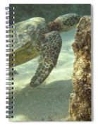 Hawaiian Green Sea Turtle Spiral Notebook