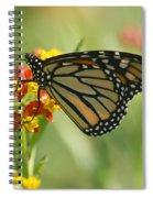 Hawaiian Monarch 1 Spiral Notebook