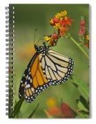 Hawaiian Monarch 2 Spiral Notebook