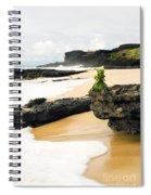 Hawaiian Offering On Beach Spiral Notebook