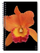 Potinara Hawaiian Thrill, Paradise Spiral Notebook