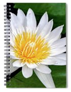 Hawaiian White Water Lily Spiral Notebook
