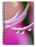 Hawaiin Rain Drops Spiral Notebook