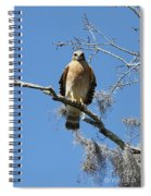 Hawk Eye Contact Spiral Notebook
