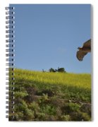 Hawk Flying Over Field Of Yellow Mustard Spiral Notebook