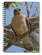 Hawk Gawk Spiral Notebook