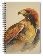 Hawk Messenger Spiral Notebook