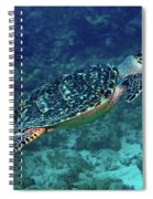 Hawksbill Sea Turtle 5 Spiral Notebook