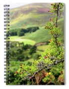 Hawthorn Branch With View To Wicklow Hills. Ireland Spiral Notebook