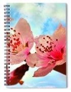 Hawthornes Spiral Notebook