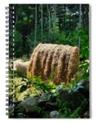 Hay Bay Rolls 2 Spiral Notebook