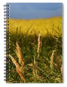 Hay Field Ready To Cut Spiral Notebook