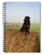 Hay There Black Dog Spiral Notebook