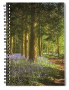 Hay Wood Bluebells 3 Spiral Notebook