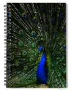 He Is The King Spiral Notebook