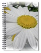 He Loves Me - He Loves Me Not Spiral Notebook