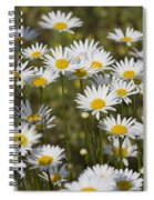 He Loves Me Daisies Spiral Notebook
