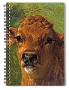 Head Of A Calf Spiral Notebook