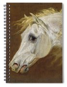 Head Of A Grey Arabian Horse  Spiral Notebook