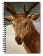 Head Of A Stag Spiral Notebook