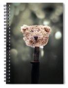 Head Of A Teddy Spiral Notebook