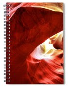 Head Of The Dog Spiral Notebook
