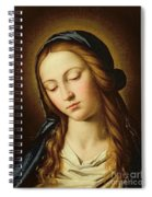 Head Of The Madonna Spiral Notebook