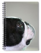 Head Study Spiral Notebook