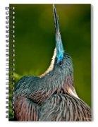 Heads Up Spiral Notebook