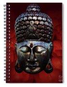 Healing Lights 3 Spiral Notebook