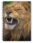 Hear Me Roar Spiral Notebook