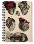 Heart, Anatomical Illustration, 1822 Spiral Notebook