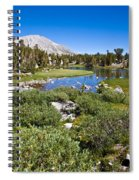 Heart Lake Folaige Spiral Notebook