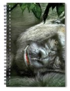 Heart Of A Beast Spiral Notebook