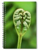 Heart Of A Fern Spiral Notebook