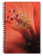 Heart Of Hibiscus Spiral Notebook