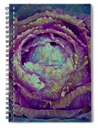 Heart Of Mystery In Magenta And Green Spiral Notebook